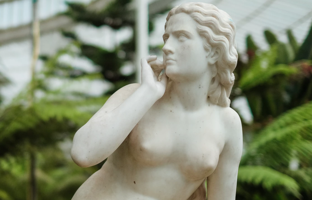 Science Behind Beauty - Statue